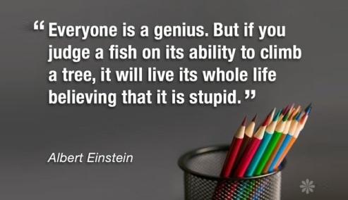 everyone-is-a-genius